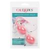 Boules de Geisha Weighted Kegel Balls