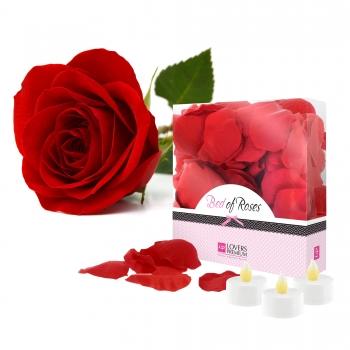 Pétales de Rose et Bougies LED